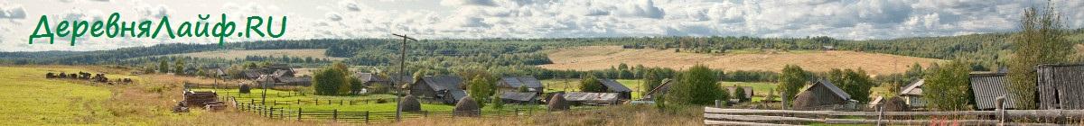 Деревня Лайф